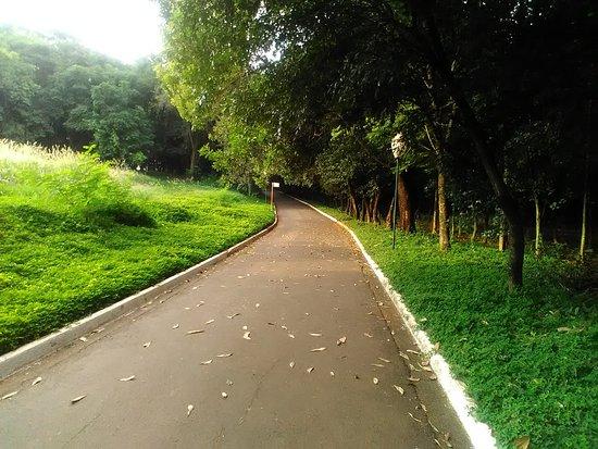 Jardim Botanico De Americana: Pista