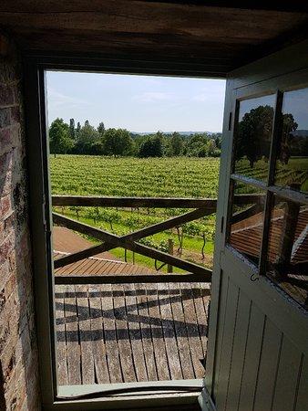 Sussex Vineyard & Winery Bus Tour: Wine Tasting at Court Garden