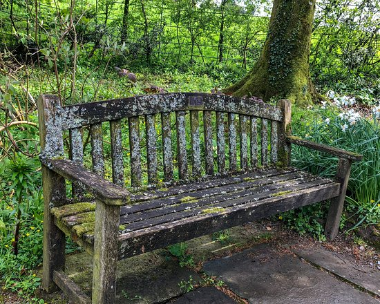 Aberglasney Gardens: Well-worn Welsh bench in Aberglasney