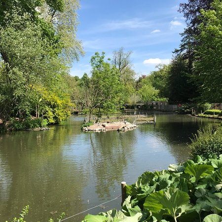 Lille Zoo: photo1.jpg