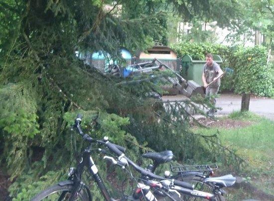 Center Parcs Les Bois-Francs: Digger outside our lodge