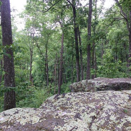 Kanawha State Forest 사진