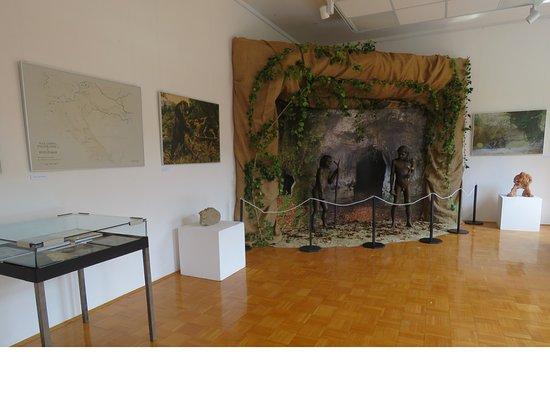 Cerkno Museum