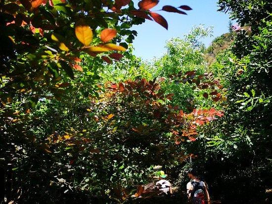Botanical Park & Gardens Of Crete ภาพถ่าย