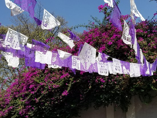 Coyoacan: The colors of San Angel.
