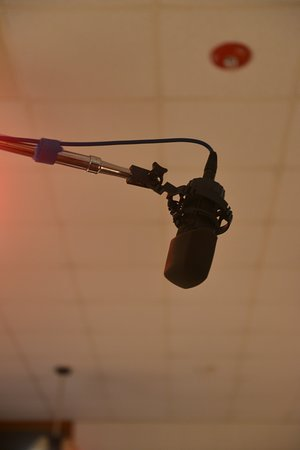 RCA Studio B: Yep, it's Elvis' mic