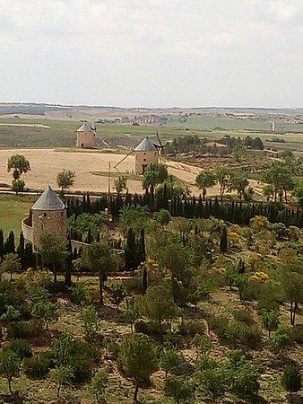Castillo de Belmonte: IMG_20180527_122939_large.jpg