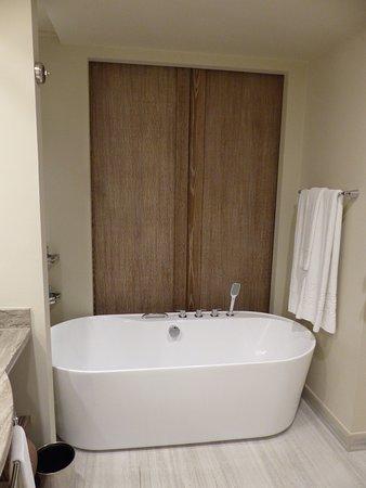 亚特兰蒂斯棕榈酒店照片