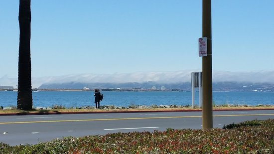 Sheraton San Diego Hotel & Marina: looking out toward the hills (covered in fog) from the parking lot