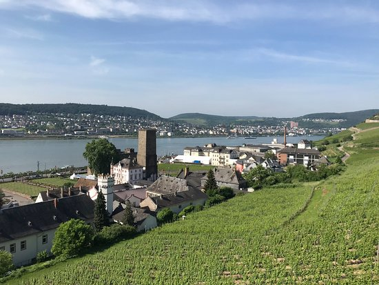 Seilbahn Rudesheim: Another view from the cable car.