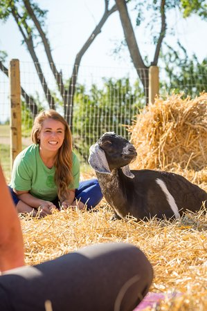 Goat yoga at Grotto Gardens