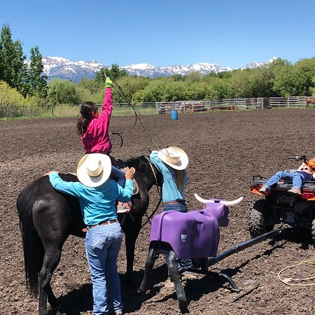 Introduction To Rodeo Photo