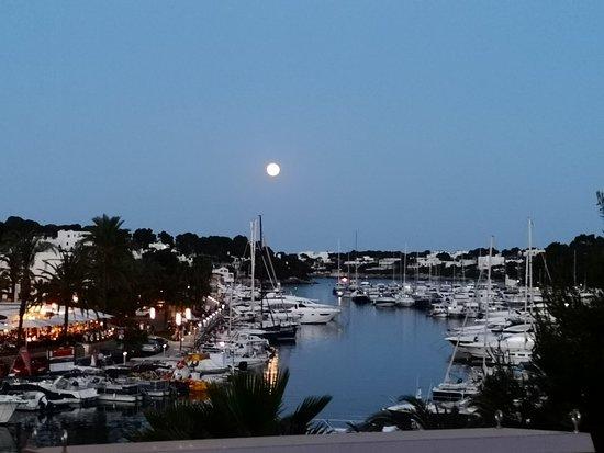 写真Bliss Bar Mallorca枚
