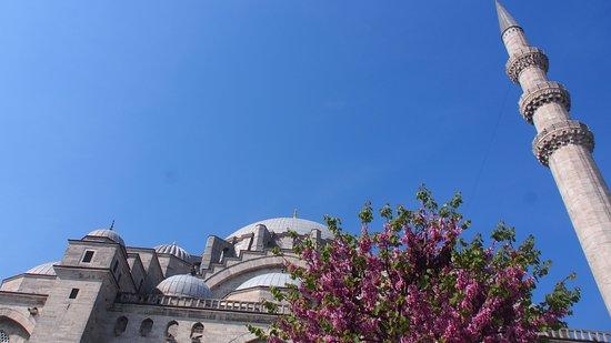 苏雷曼尼亚清真寺照片