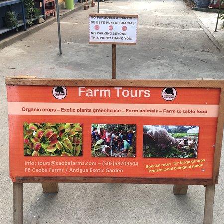 Caoba Farms照片