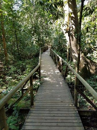 Manuel Antonio National Park照片