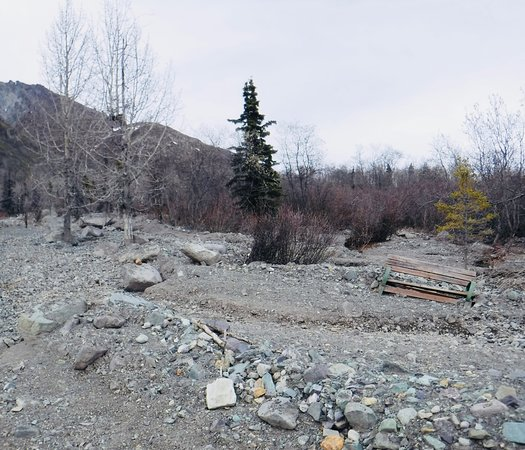 Sheep Mountain Lodge: Mudslide Path