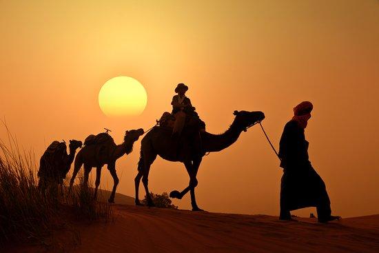 Best Travel Morocco: Camel trekking during the sunset time in the desert