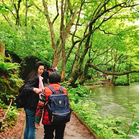 Oirase Mountain Stream ภาพถ่าย
