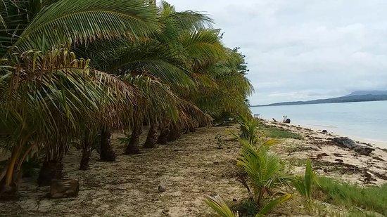 Leleuvia Island Photo