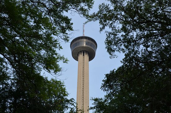 Amigo Free Walking Tours: The Tower of the Americas is the crown jewel of San Antonio's skyline, near where the tour ends.