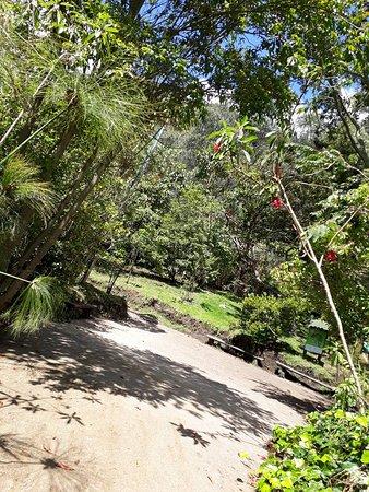 Bioparque La Reserva: Plazoleta Bioparque