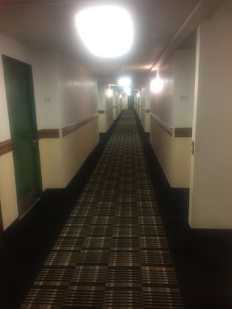 Quality Inn Downtown Convention Center: corredor (walkway)