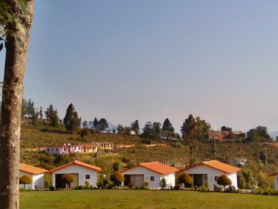 KMVN Tourist Rest House Chaukori: Cottages