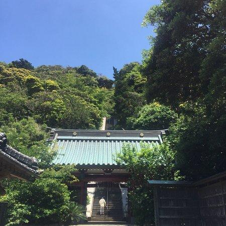 写真洲崎神社枚
