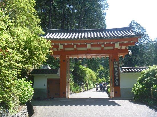 Mimurotoji Temple Foto