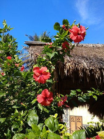 翠竹村庄海滩水疗度假酒店照片