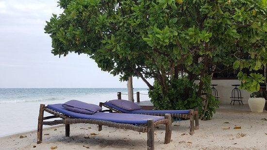 写真Zanzibar Magic Boutique Hotel枚