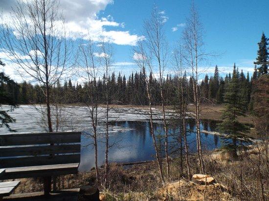 Bilde fra Trapper Creek