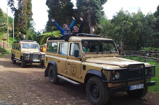 Private Madeira Half-Day Jeep Tour...