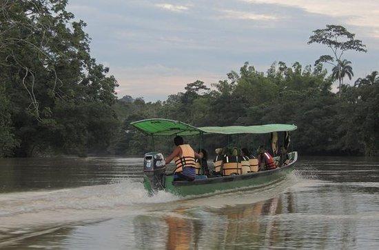 3-DAYS PRIVATE UPPER AMAZON TOUR