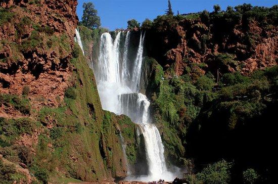 Cachoeiras de Ouzoud da viagem do dia...