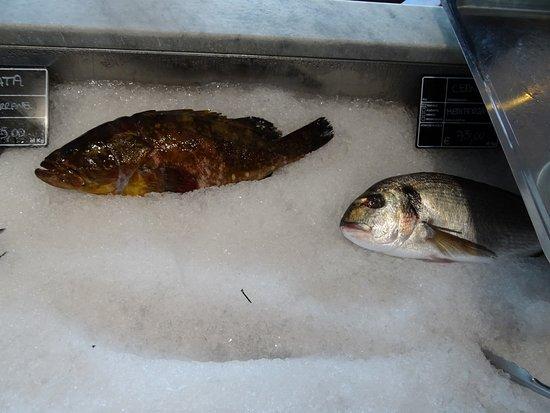 Il Marin Ristoro del Porto Antico: Pescato