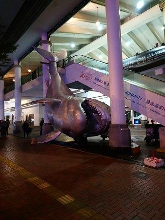 Hong Kong Maritime Museum: Large Shark