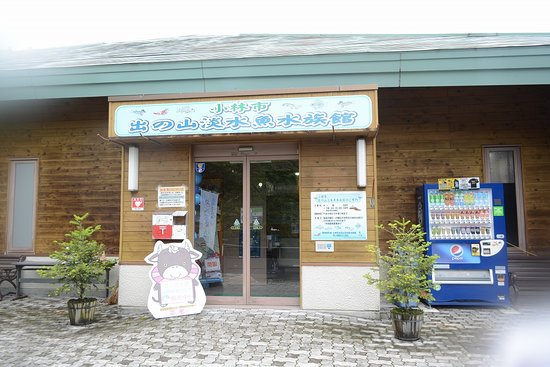Idenoyama Freshwater Fish Aquarium