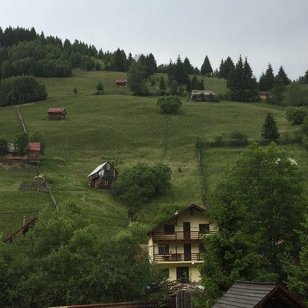 Moieciu de Sus, Rumunia: photo0.jpg