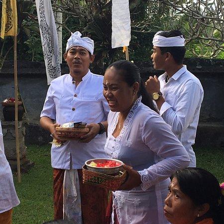 Bali Eco Stay Bungalows: Quelques souvenirs de mon séjour à Bali Eco Stay #50shadesofgreen