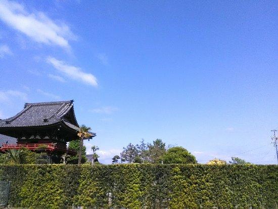 Shoro in Saifukuji Temple