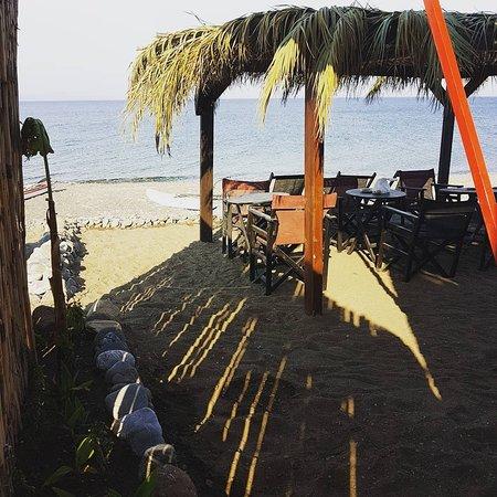 Windzone Surf Club