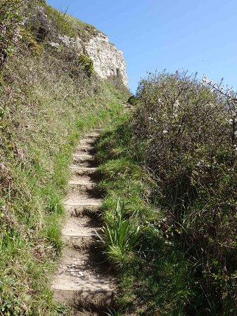 Jurassic Coast: walking trail