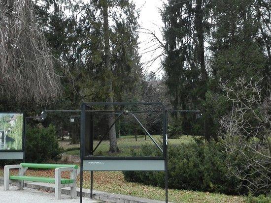 Tivoli Park: Angolo del Parco 5