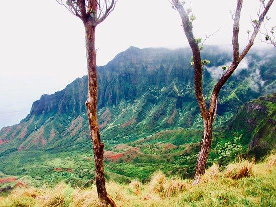 Hike Kauai With Me: Pinch me