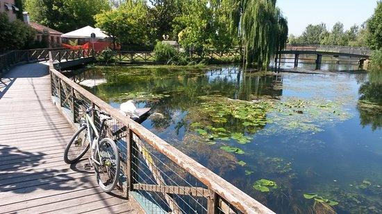 Venetouring: Greenway of Sile river