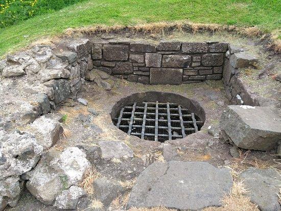 Dundonald Castle : Well well well ?