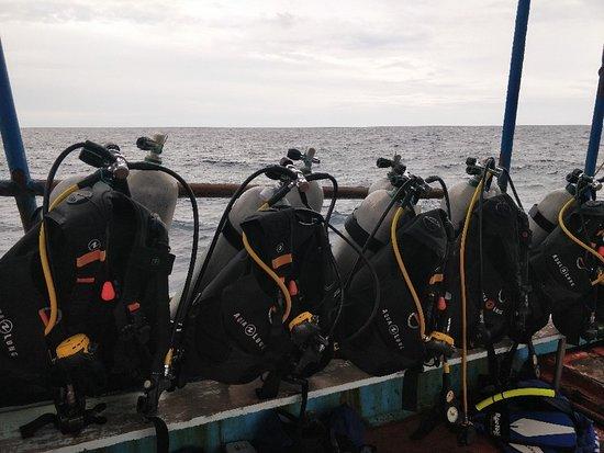 Roctopus Dive: IMG_20180603_070910_large.jpg
