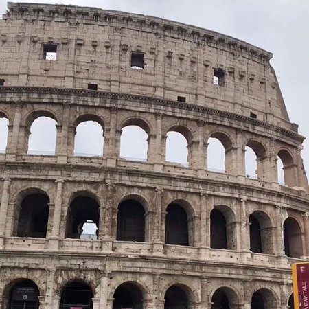 Skip the Line: Colosseum Roman Forum and Palatine Hill Private Tour: the Colosseum